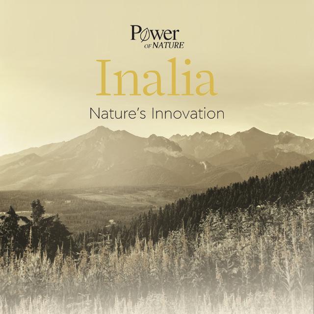 κατασκευή ιστοσελίδας inalia